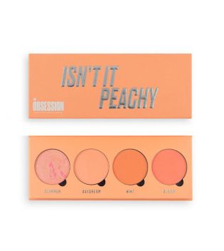 Makeup Obsession - Isn't it Peachy Blush Palette
